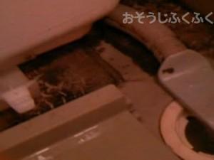 浴室クリーニング 浴槽下清掃前写真