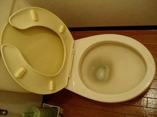 トイレ掃除~便器編12