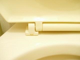 トイレ掃除~便器編14
