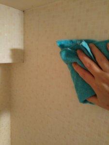 室内のカビを掃除する7